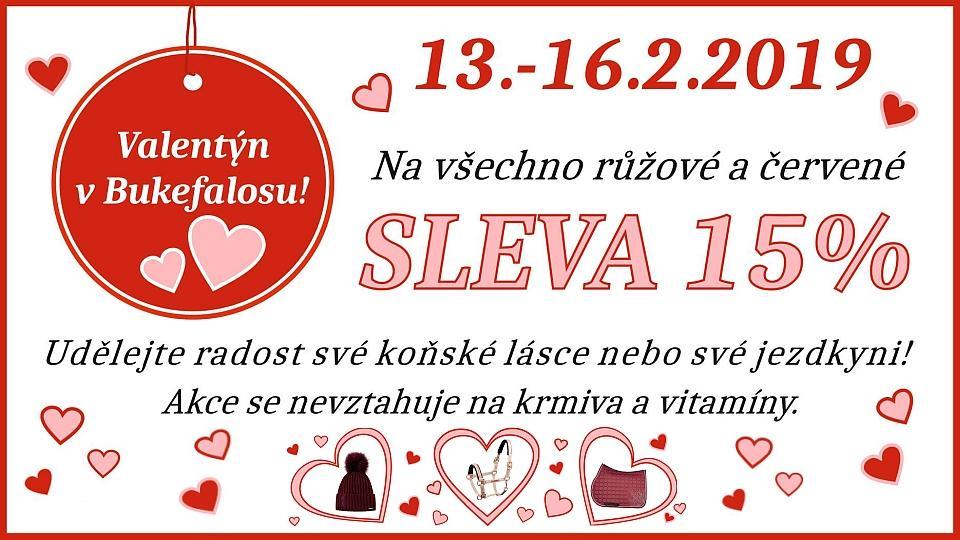 4b1e0496c2d preload Valentýn v Bukefalosu. Udělejte radost své koňské lásce